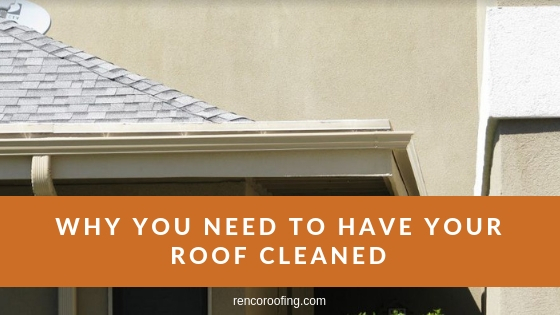 Roof Cleaning, Why You Need to Have Your Roof Cleaned