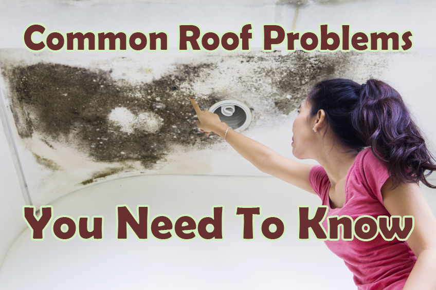 common roof problems you need to know