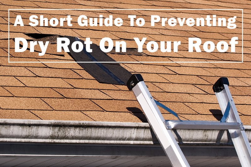 Preventing Dry Rot On Your Roof
