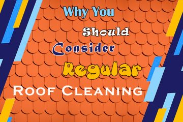 roof cleaning, Why You Should Consider Regular Roof Cleaning